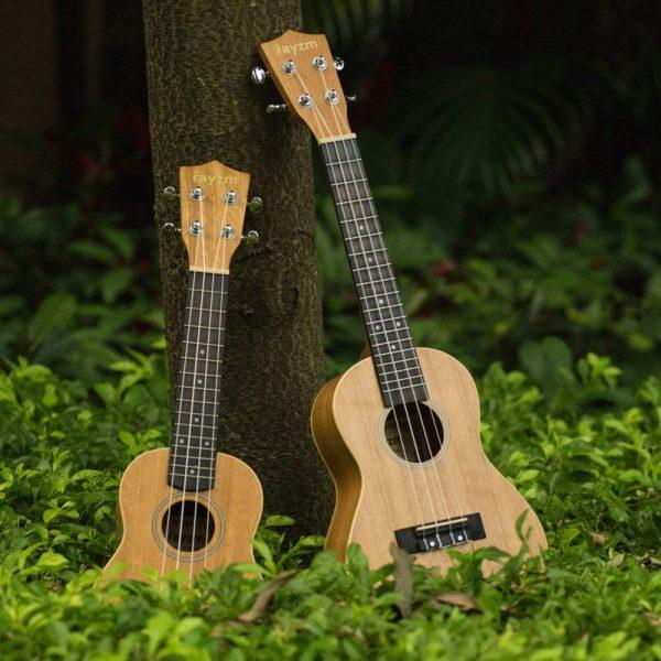 Rayzm, ukelele, ukulele, ukelele principiantes, ukeleles, ulelele concierto, ukelele barato, ukelele niños